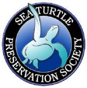Sea Turtle Preservation Society Launches  New Marketing and Public Relations Team
